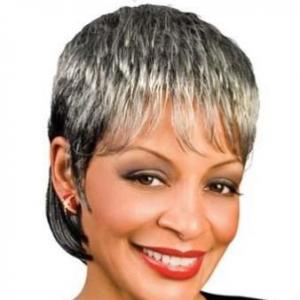 Inch New Style Short Curly Gray African American Lace Wigs for Women ...