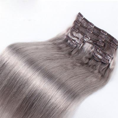10 - 32 Inch Clip In Human Hair Extensions Grey Straight