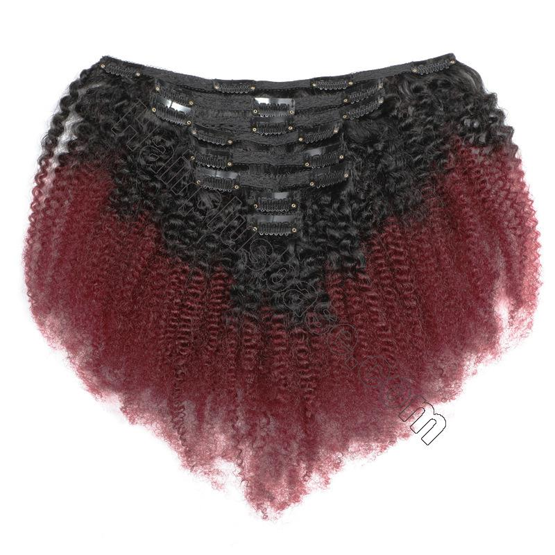 Cheap Ombre Afro Kinky Curly Clip In Human Hair Extensions #1B/#99J 120g 2