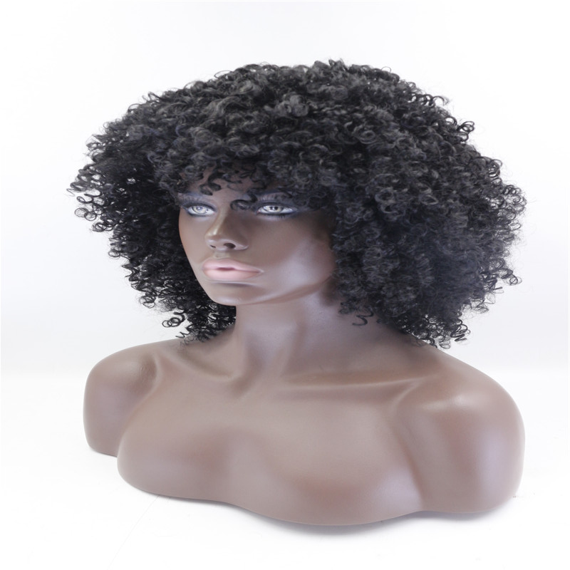 Fashion Black Curly Kinky Lace Front Wigs For Black Women 1