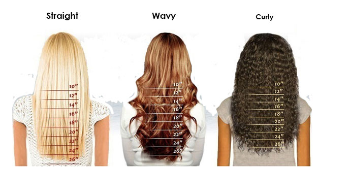 Hairplusbase Hair Length Chart