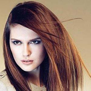 Straight Brown Cheap Lace Front Long Top Quality High Heated Fiber Hair Wig